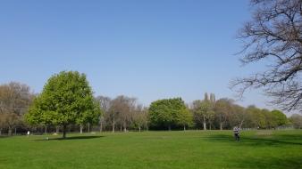 Day 7 - Regents Park
